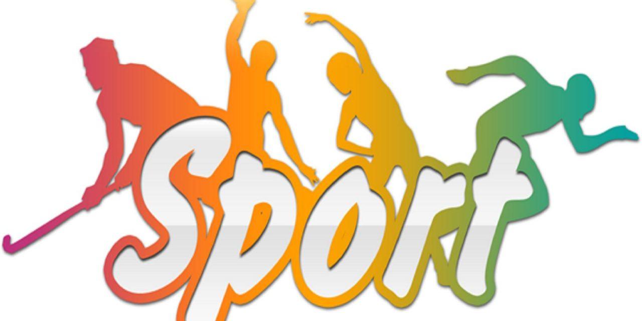 Jocuri educație fizică și sport